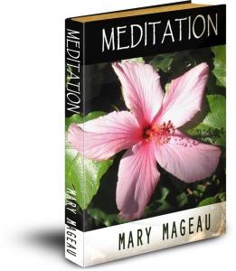 Meditation_3D cover, Scott