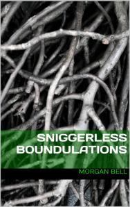 Sniggerless Boundulations cover