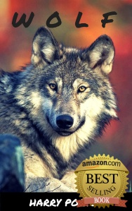 Cover_WOLF_Bestseller_500