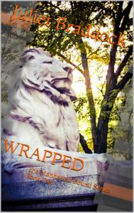 Wrapped FINAL COVER